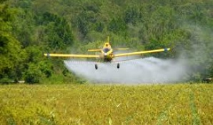 Pesticide and Environmental Safety